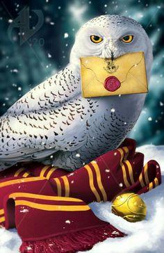 Hery Potter, Arte Do Harry Potter, Harry Potter Painting, Harry Potter Cartoon, Cute Harry Potter, Harry Potter Poster, Harry Potter Artwork, Harry Potter Magic, Theme Harry Potter