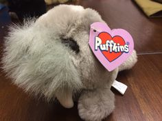 Puffkins by Swibco Whiskers Birthday: 4-2-98