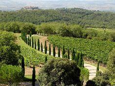 Tuscany, so pretty.