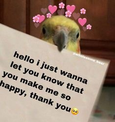 Fb Memes, Funny Memes, Wholesome Pictures, Please Love Me, Cute Love Memes, When I See You, Cute Messages, Cute Texts, Wholesome Memes