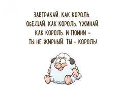 http://storyfox.ru/post/smeshnye-otkrytki-s-poleznymi-nablyudeniyami/