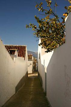Rincones de Andalucía: calle de Carcabuey (Córdoba) / Places of Andalucía: street of Carcabuey (Córdoba)