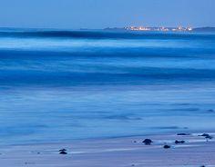 "Check out new work on my @Behance portfolio: ""La mer bleu ..."" http://be.net/gallery/35787159/La-mer-bleu-"