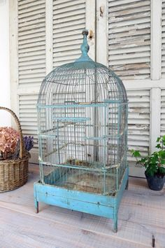 French antique bird cage ¥ 32,600yen