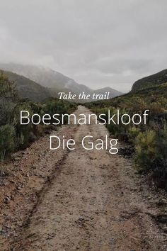 The Lion & The Lady on Steller // Boesmanskloof Trail, Lion, Told You So, Leo, Lions