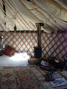 yurt in northumberland