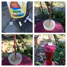 How to keep ants out of your hummingbird feeder without poisons: 1. Take the lid of a water bottle and use a hammer and nail to make a hole in the middle. 2. Slide the cap, open face up, down the wire cord. 3. Put poster putty between top of hummingbird feeder and water bottle cap to create a seal. 4. Fill cap with vegetable oil. The ants can't swim through the oil, thus keeping them out of the feeder. I've had this set up for a week and still ant-free!