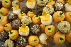 Cake Gallery on Cake Central Thanksgiving Cake Pops, Thanksgiving 2013, Fall Cake Pops, Fall Wedding Cakes, Autumn Wedding, Wedding Ideas, Brownie Pops, Fall Candy, Autumn Theme