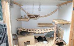 chinchilla DIY cage