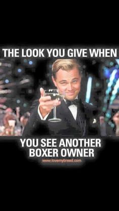 So true... boxer owners are the only people who understand how amazing this breed is.