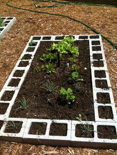 Home Harvests: Vegetable Garden Design