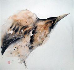 Karl Martens's birds