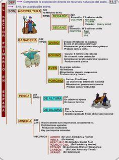 11-1-el-sector-primario-en-espana