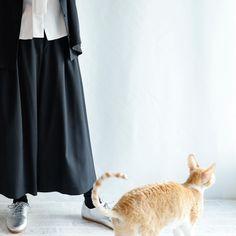 Caturday! Ballet Skirt, Normcore, Boutique, Instagram, Skirts, Style, Fashion, Swag, Moda