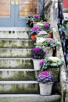 Garden Decoration Ideas - Decorate the garden or porch with flowers Diy Pond, Vintage Gardening, Garden Steps, Clay Pot Crafts, Diy Garden Decor, Garden Decorations, Covent Garden, Diy Planters, Autumn Garden