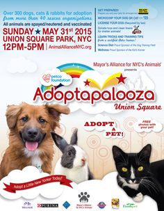 Head on out to #UnionSquare this upcoming Sunday, 5/31 between 12pm-5pm and meet over 300 adoptable  animals from 40+ shelters!