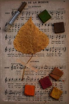 Autumn's song with colors... | odile lm