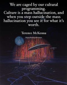 We are caged by our cultural programming. Culture is a mass hallucination, and when you step outside the mass hallucination, you see it for what it's worth. Unplug from the Matrix . Illuminati, Terence Mckenna, For What It's Worth, Spiritual Awakening, Spiritual Reality, Thought Provoking, Affirmations, The Outsiders, Everything
