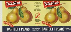 Wattie's Bartlett Pears can label, late Vintage Food Labels, Vintage Pantry, Vintage Packaging, Bartlett Pears, Doll House Crafts, Kiwiana, Jar Labels, Miniature Dolls, Miniature Food