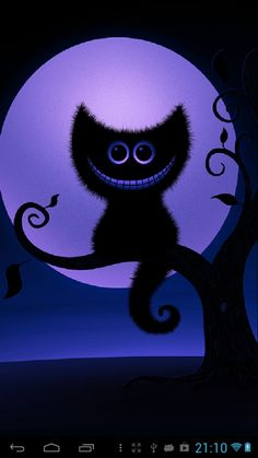 Cheshire Cat - Yahoo Image Search Results