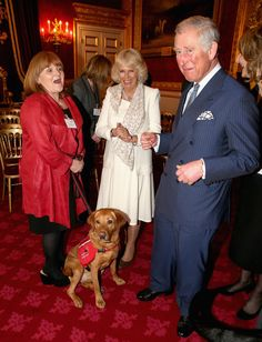 Downtown Abbey actress Lesley Nicol shares holds on to Medical Detection Dog as she laughs with Prince Charles, Prince of Wales and Camilla, Duchess of Cornwall during a demonstration by medical dogs at St James's Palace on March 11, 2014