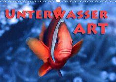 Unterwasserart - CALVENDO Kalender von Dieter Gödecke - #unterwasser #underwater #photography #fotografie #kalender