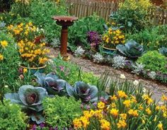 I <3 Beautiful Edible Plant Beds. Two spring vegetable beds invite you to stroll by and harvest the makings of a delicious salad. The edibles featured here are sculptural red cabbages, frilly 'Salad Bowl' lettuces, mizuna, collards, mustards and even the flowers of a broccoli plant. The cook has many choices — from the yard!