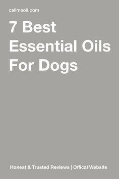 It has been proven that essential oils can help make our four-legged friends live healthier, happier and better. Using aromatherapy for your dog is a great way to make the most of essential oils. These are the best essential oil blends and recipes for y Patchouli Essential Oil, Essential Oil Diffuser Blends, Organic Essential Oils, Best Essential Oils, Essential Oils For Migraines, Essential Oils For Headaches, Aromatherapy Recipes, Aromatherapy Oils, Yl Oils