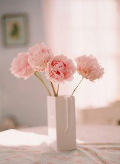 花 ❀ flowerの画像 プリ画像
