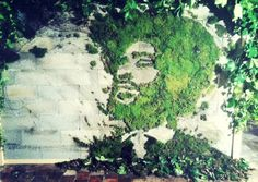 1000 images about moss graffiti on pinterest moss graffiti moss wall art and mexico city. Black Bedroom Furniture Sets. Home Design Ideas