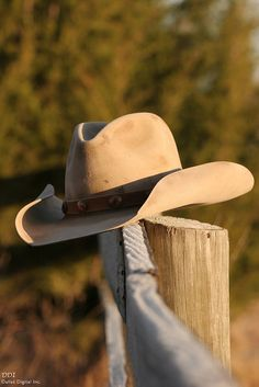 """""""There's a little cowboy in all of us, a little frontier."""" ~Louis L'Amour"""