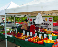 Farmer's Market on Water Street Henderson, Nevada