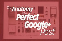 Search - Google+