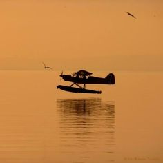 Sea Plane Ride in Nanaimo, British Columbia, Canada Float Plane, Plane Ride, Bush Pilot, Plane And Pilot, Bush Plane, Flying Boat, Aviation Art, British Columbia, Aircraft