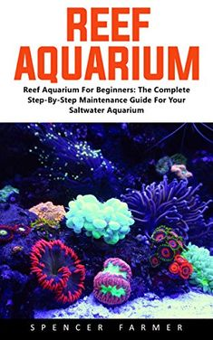 Reef Aquarium: Reef Aquarium For Beginners - The Complete Step-By-Step Maintenance Guide For Your Saltwater Aquarium Saltwater Aquarium Beginner, Saltwater Aquarium Setup, Aquarium Ideas, Saltwater Tank, Reef Aquarium, Salt And Water, Fresh Water, Beautiful Fish, Aquariums