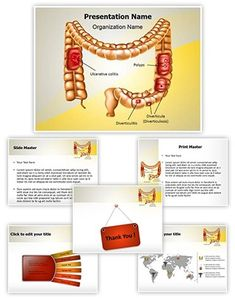 8 Best Digestive System Powerpoint Templates Images Human Digestive System Powerpoint Templates Powerpoint
