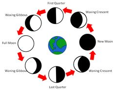 phases of the moon activity 4th grade - Yahoo Search Results