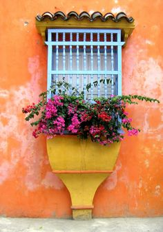 an orange and yellow wall with a light blue window, filled with pink and red bougainvillea