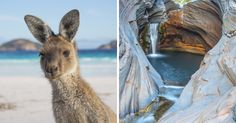 I Spent 9 Months Road Tripping The Big Lap Of Australia And Took These Amazing Photos To Remember It! Cool Photos, Amazing Photos, Personal Image, Australia Living, 9th Month, Bored Panda, T Rex, Fiancee, Art Photography