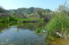 Malibu Creek State Park is great for short to day long hikes.