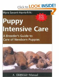Puppy Whelping 101 By Lisa Radosta Dvm Dacvb How Do You Go About