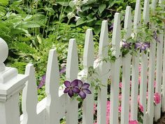 Design Ideas for Your Fence, Front Yard and Backyard Designs / Lushome Backyard Fences, Garden Fencing, Front Yard Landscaping, Landscaping Ideas, White Picket Fence, White Fence, Picket Fences, Wood Fence Design, Front Yard Fence