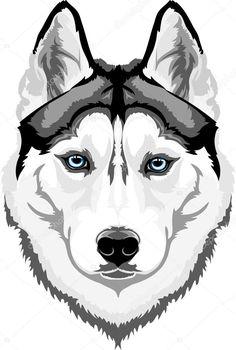 Wonderful All About The Siberian Husky Ideas. Prodigious All About The Siberian Husky Ideas.