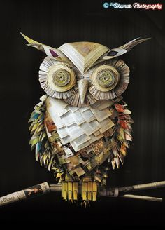 Owl made from paper. Paper Book, Paper Art, Owl Crafts, Paper Crafts, Book Art, Paper Owls, Owl Pictures, Owl Always Love You, Wise Owl