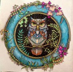 floresta encantada livro coruja - Pesquisa Google
