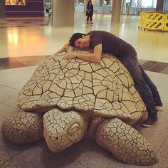 Despidiendo se de su tortuga en Las Vegas