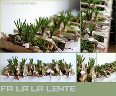 Workshop Pasen/Lente 2015 Pot en papaver