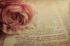Open your old Bible or other book and place a natural looking artificial rose on top.  Beautiful isn't it!
