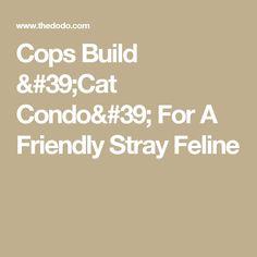 Cops Build 'Cat Condo' For A Friendly Stray Feline