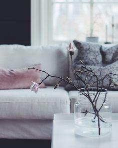 Kikker innom for å gi dere en liten magnoliaoppmuntring på en tirsdag i mars. Jeg skal bure meg inne på kontoret, skrive på boka mi,…